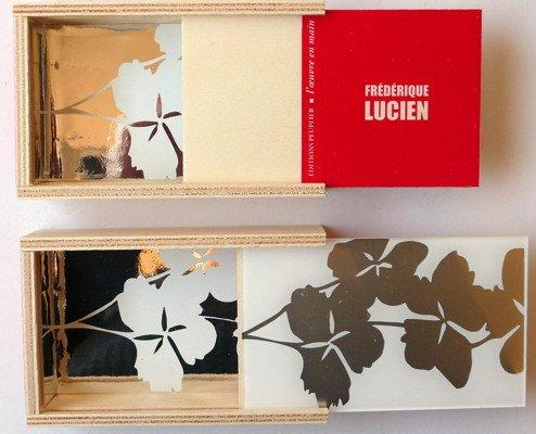 Frédérique Lucien, Suite De Natura, 120 exemplaires, 11,4 x 7,2 x 3cm, encre miroir sur plexi ©éditions peuplier