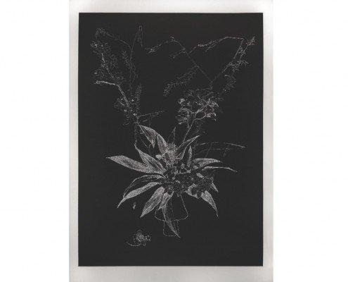 Anne Laure Sacriste, Ikebana aux branchages noirs Eau-forte imprimée en taille d'épargne 117 x 80 cm 10 ex. - vélin de Rives 800.- € -