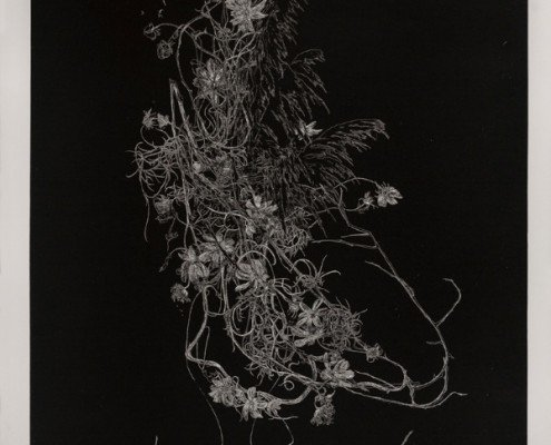 Anne Laure Sacriste, Ikebana aux branchages noirs Eau-forte imprimée en taille d'épargne 117 x 80 cm 10 ex. : vélin de Rives 800.- €